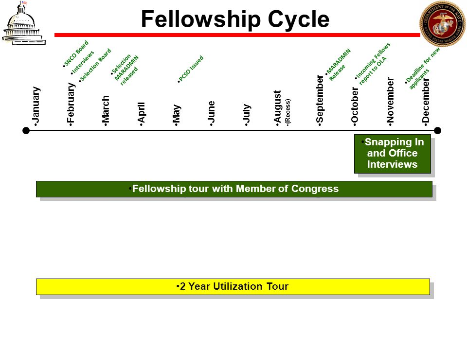 Fellowship Cycle Snapping In and Office Interviews