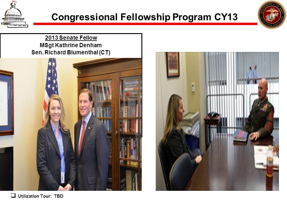 Congressional Fellowship Program CY13