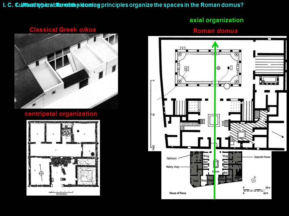 centripetal organization
