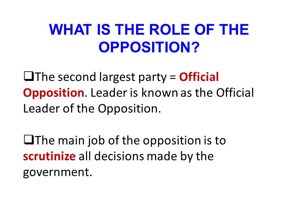WHAT IS THE ROLE OF THE OPPOSITION