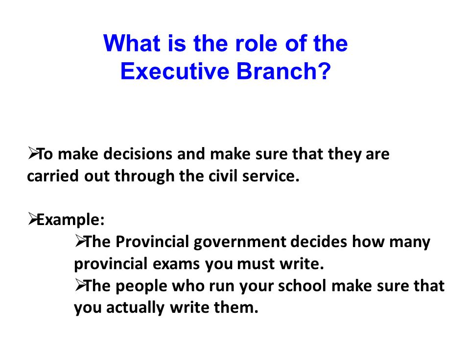 What is the role of the Executive Branch