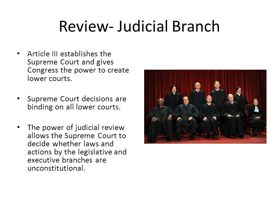 Review- Judicial Branch