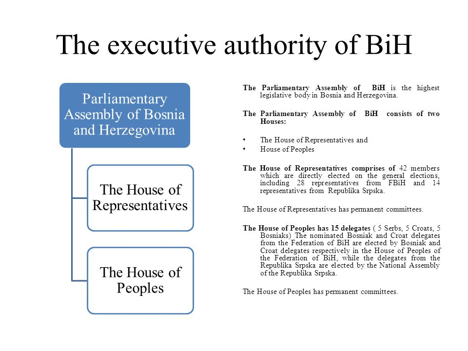 The executive authority of BiH