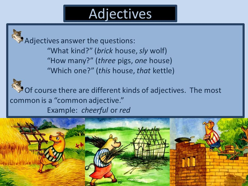 Adjectives Adjectives answer the questions: