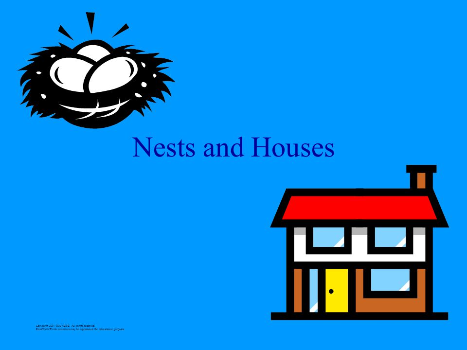 Nests and Houses Copyright 2007 IRA/NCTE. All rights reserved.
