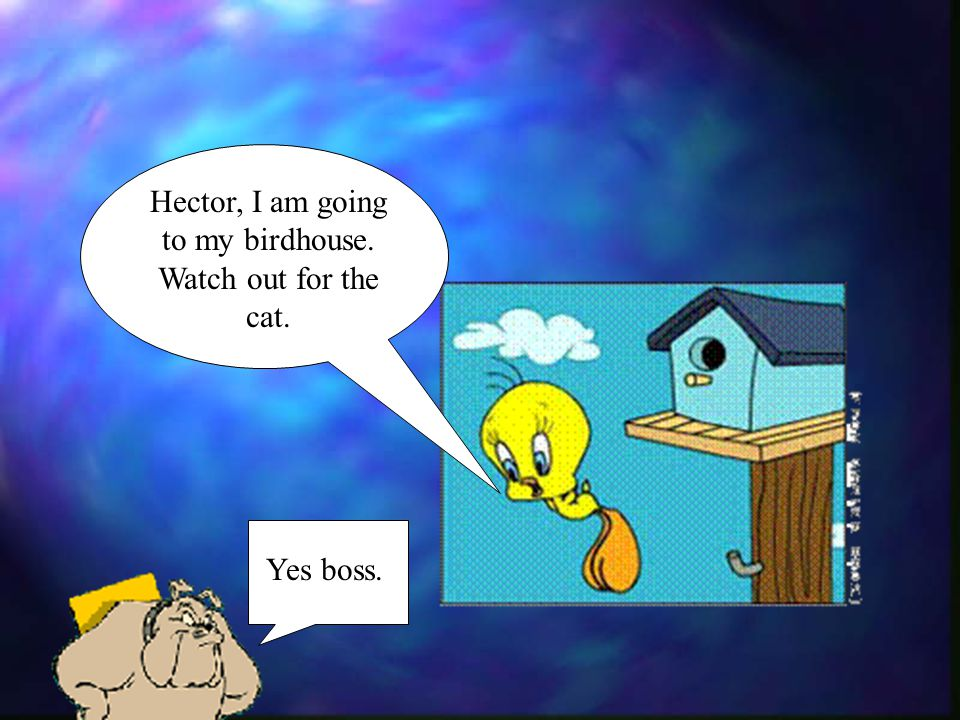 Hector, I am going to my birdhouse. Watch out for the cat.