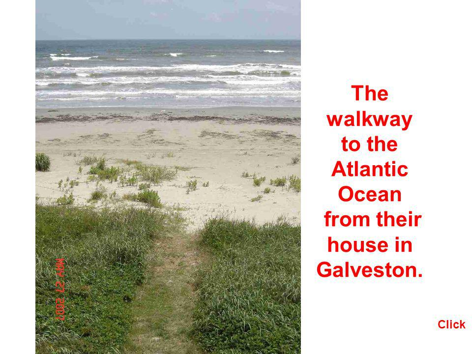 The walkway to the Atlantic Ocean from their house in Galveston.