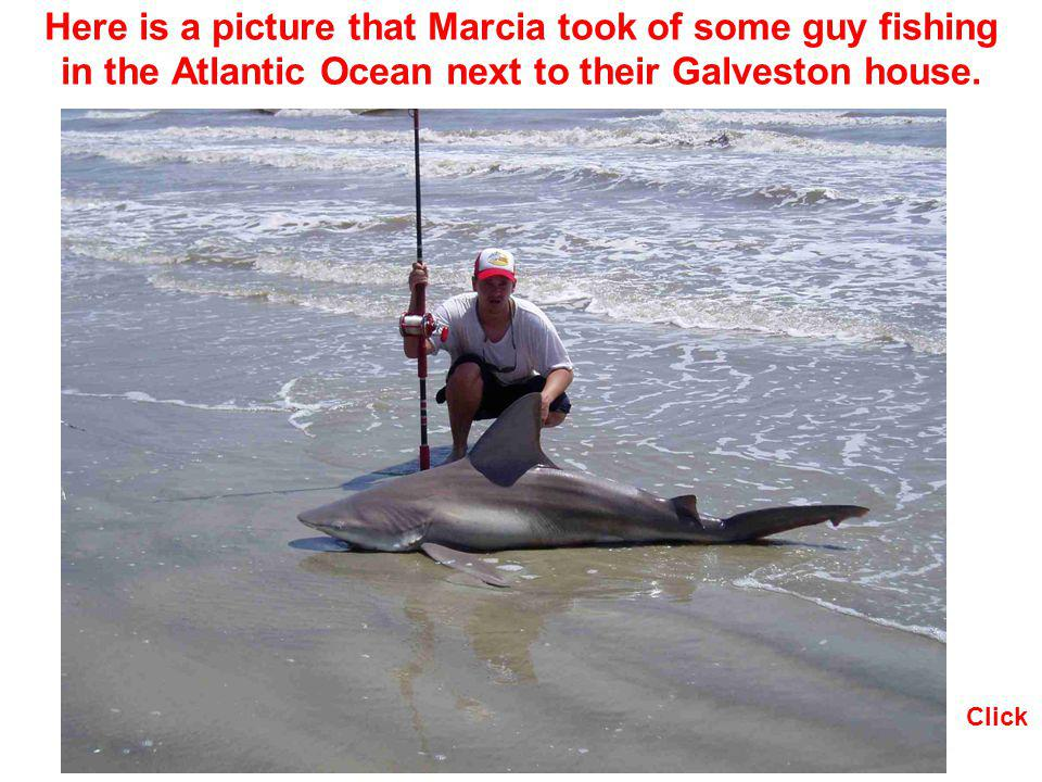 Here is a picture that Marcia took of some guy fishing in the Atlantic Ocean next to their Galveston house.