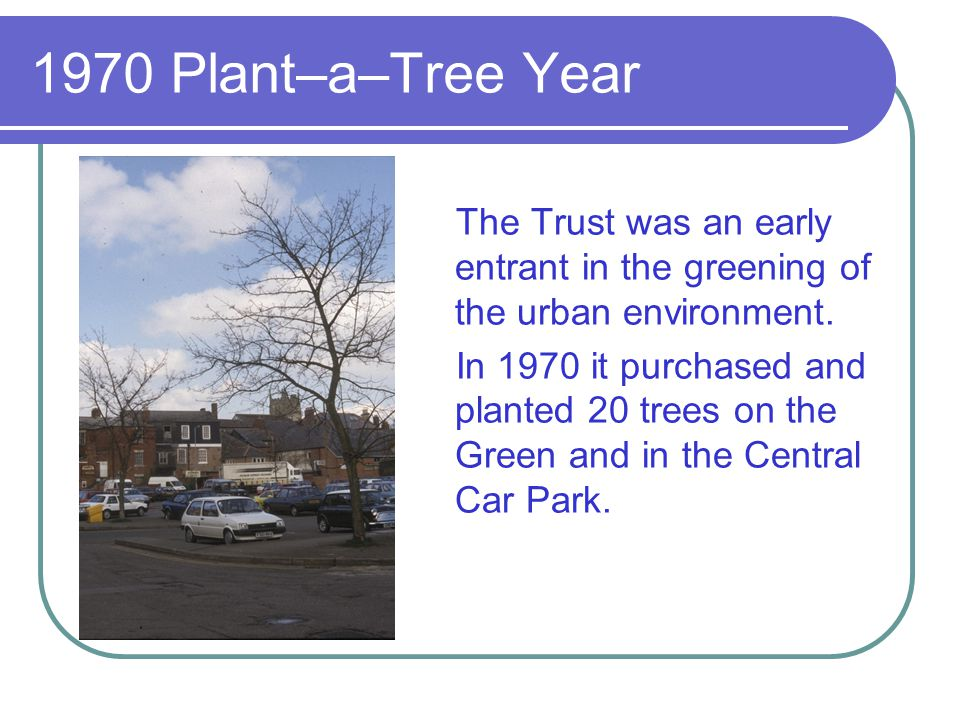 1970 Plant–a–Tree Year The Trust was an early entrant in the greening of the urban environment.