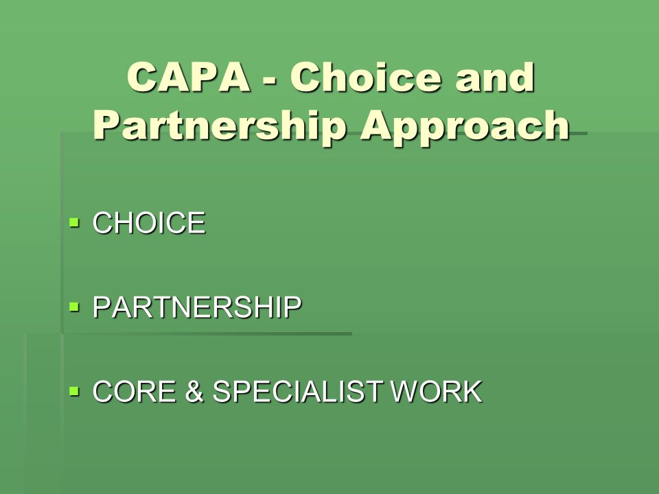 CAPA - Choice and Partnership Approach
