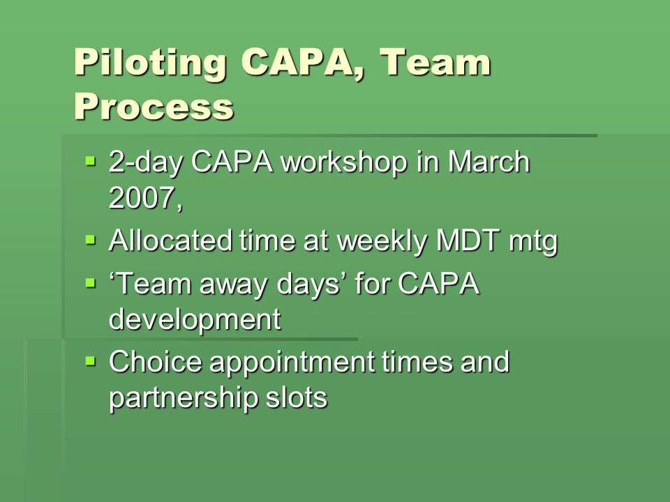Piloting CAPA, Team Process