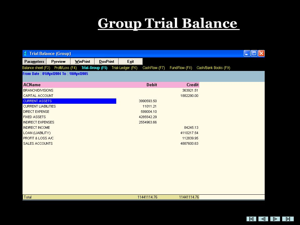 Group Trial Balance