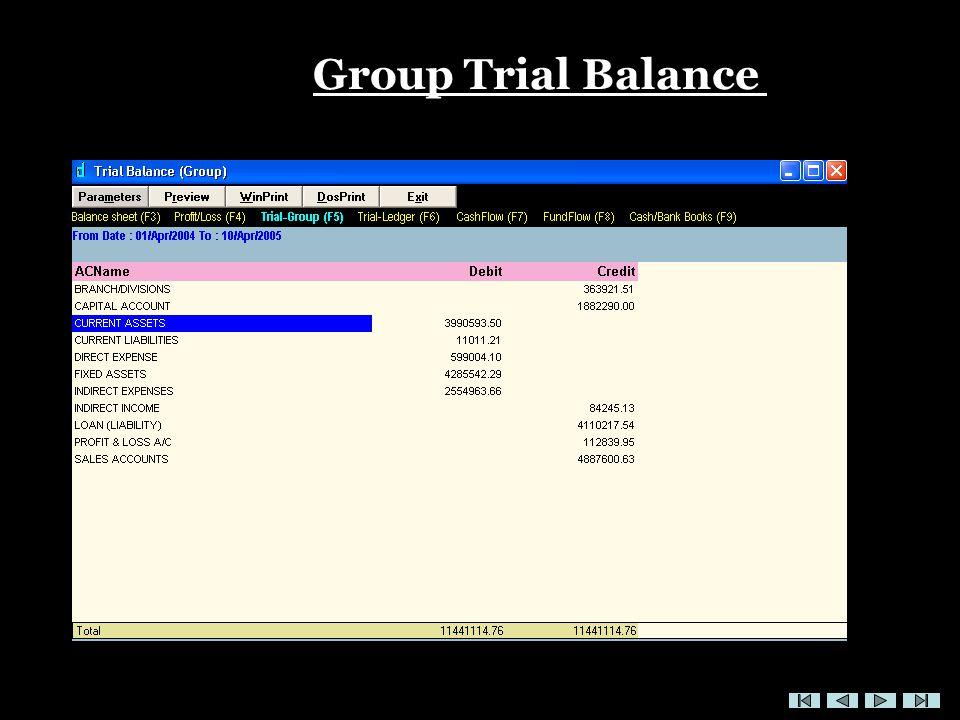 Group Trial Balance