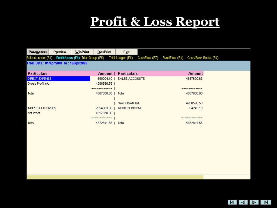 Profit & Loss Report