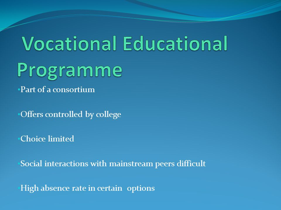 Vocational Educational Programme
