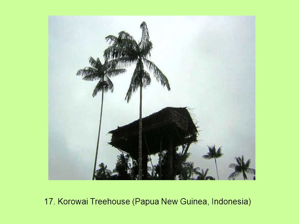 17. Korowai Treehouse (Papua New Guinea, Indonesia)