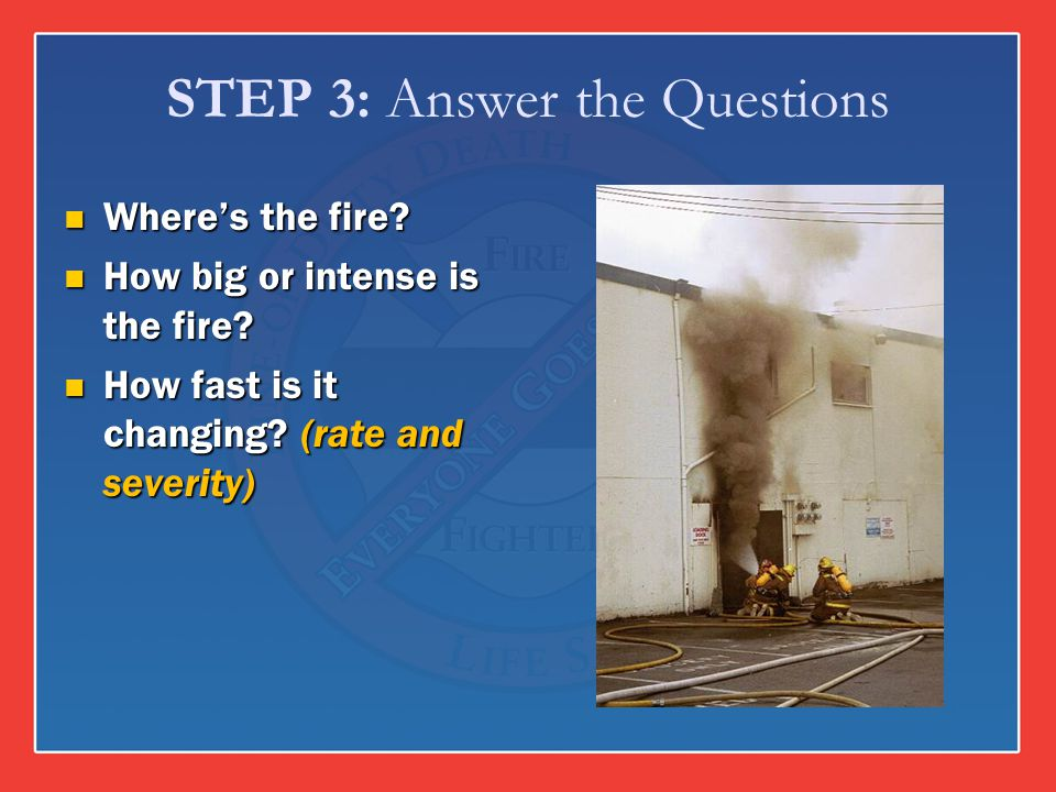 STEP 3: Answer the Questions