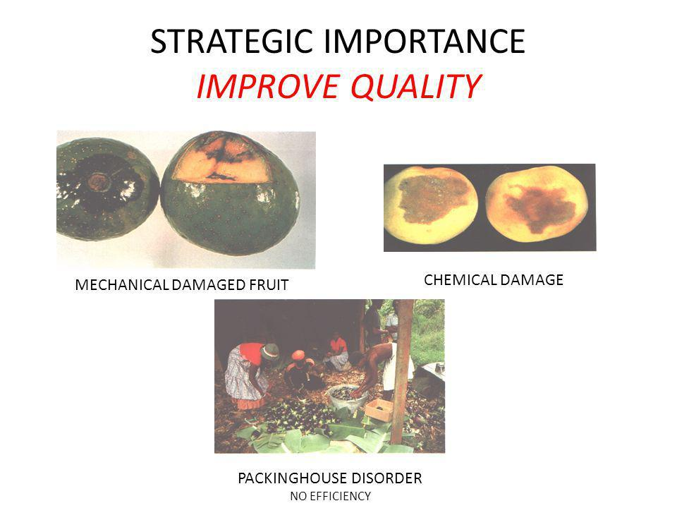 STRATEGIC IMPORTANCE IMPROVE QUALITY