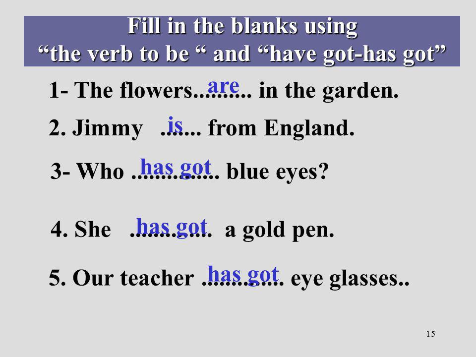 Fill in the blanks using the verb to be and have got-has got