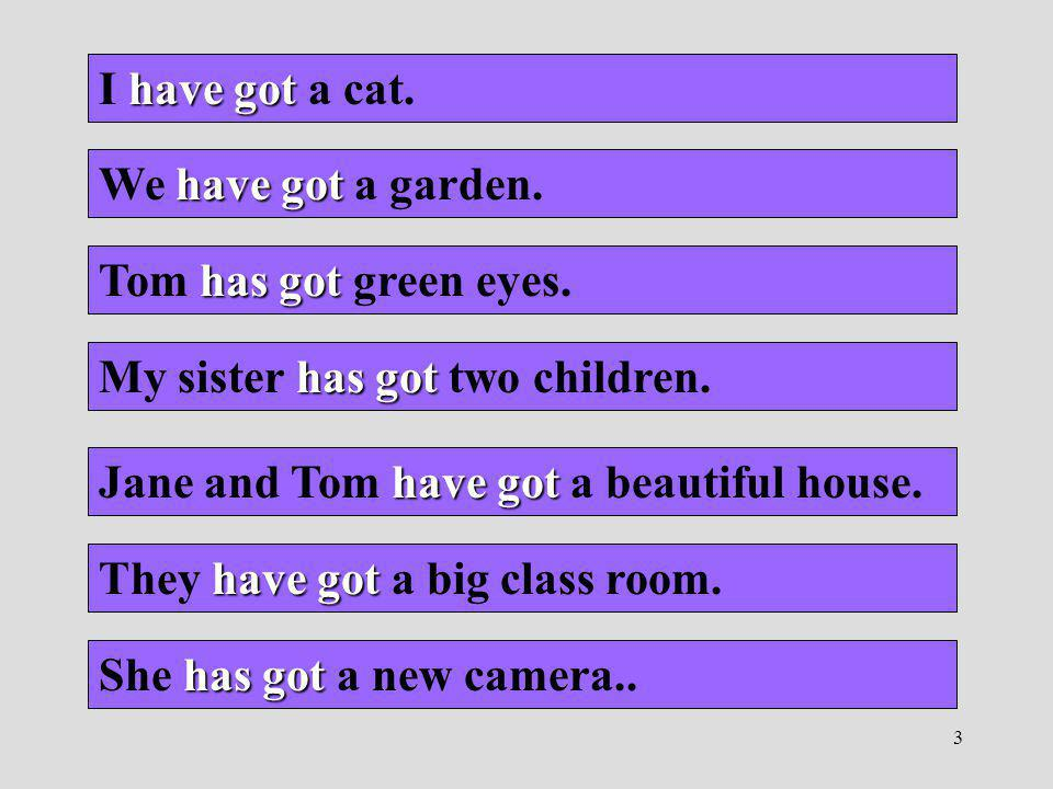 I have got a cat. We have got a garden. Tom has got green eyes. My sister has got two children. Jane and Tom have got a beautiful house.