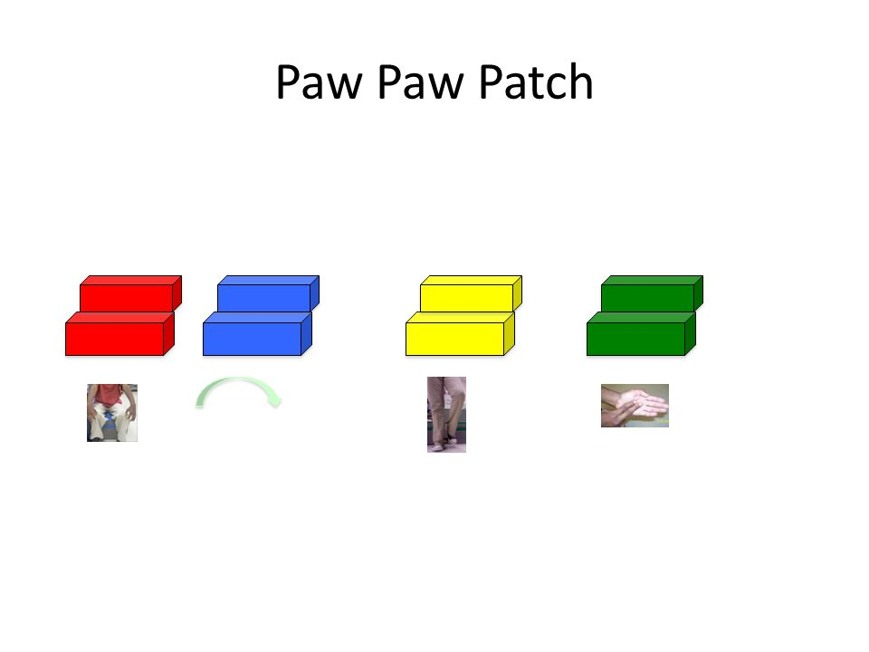 Paw Paw Patch