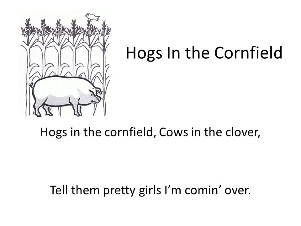 Hogs In the Cornfield Hogs in the cornfield, Cows in the clover, Tell them pretty girls I'm comin' over.