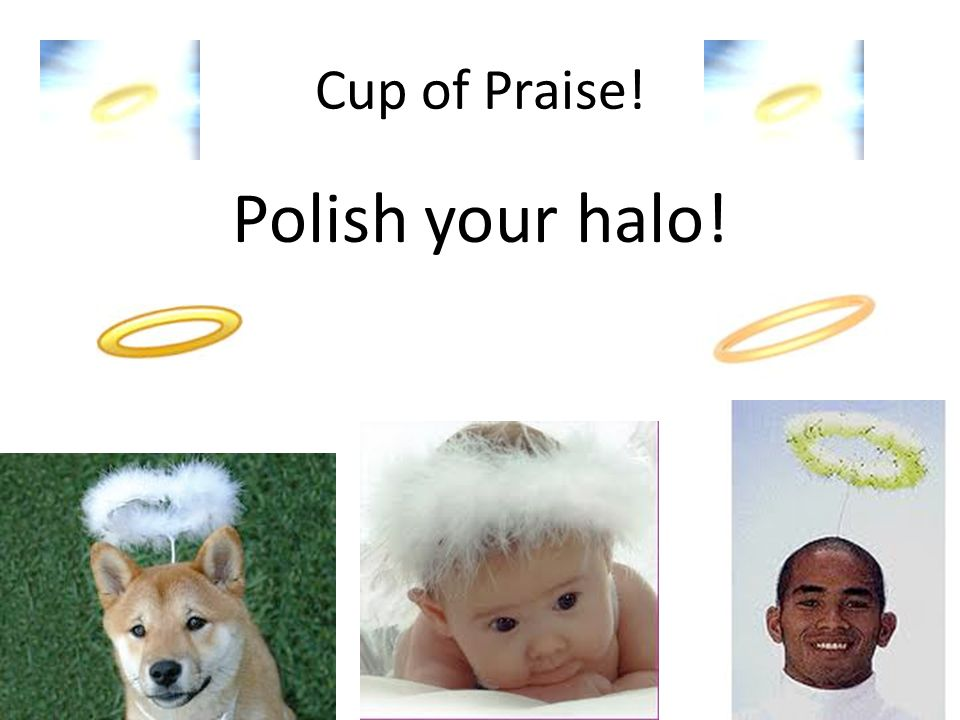 Cup of Praise! Polish your halo!