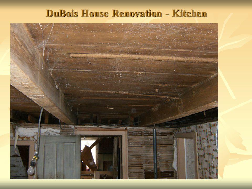 DuBois House Renovation - Kitchen