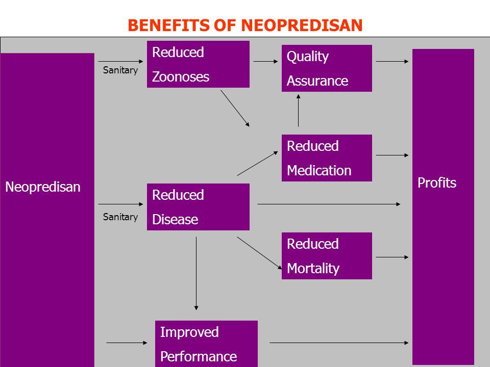 BENEFITS OF NEOPREDISAN