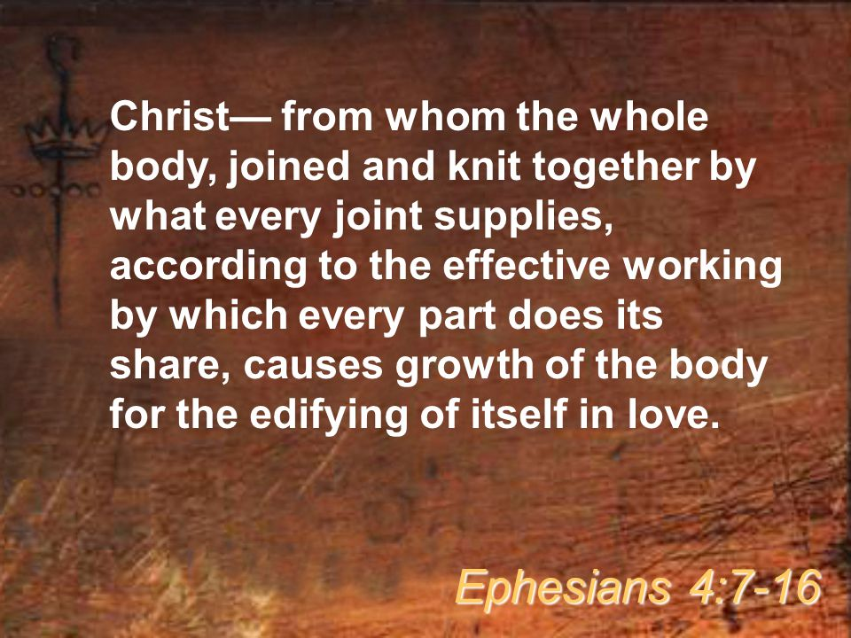 Christ— from whom the whole body, joined and knit together by what every joint supplies, according to the effective working by which every part does its share, causes growth of the body for the edifying of itself in love.
