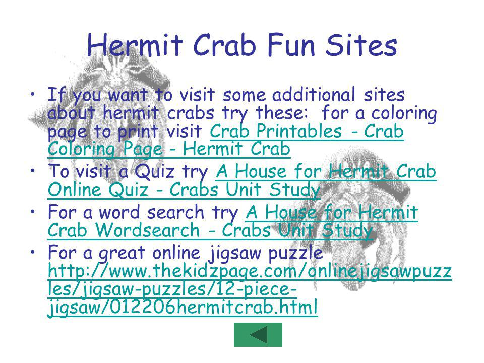 Hermit Crab Fun Sites