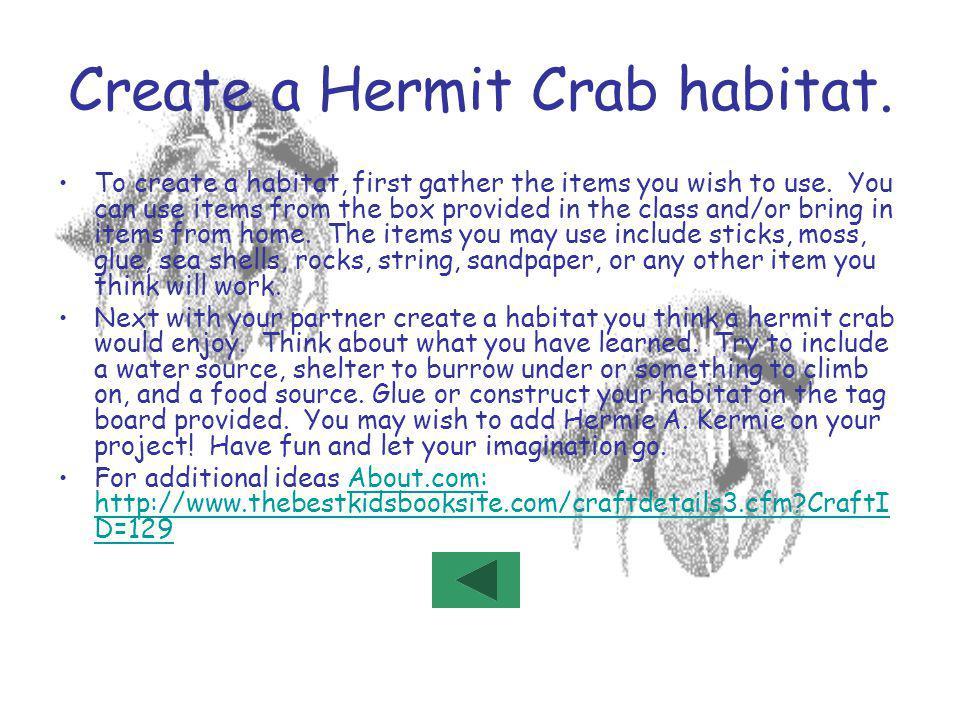 Create a Hermit Crab habitat.