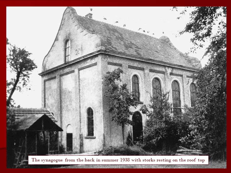 Still the synagogue was standing intact at it's place in the summer of 1938. Some storks were favouring its roof as a resting place like usual. However, two months later hell broke loose in 'Ringstrasse'. The so called Crystal Night took its course ...