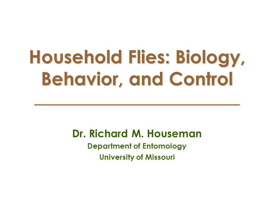 Household Flies: Biology, Behavior, and Control