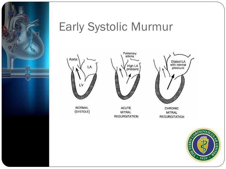 Early Systolic Murmur