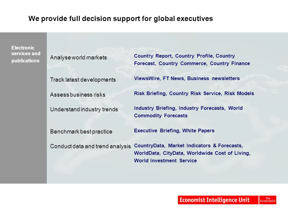 We provide full decision support for global executives