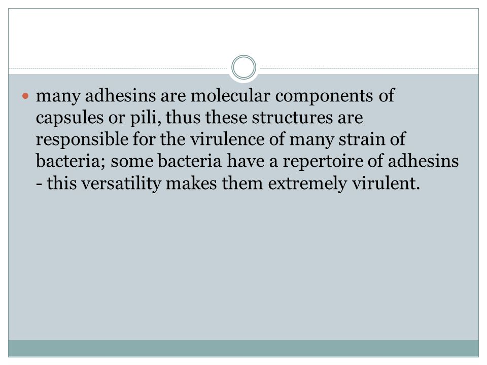 many adhesins are molecular components of capsules or pili, thus these structures are responsible for the virulence of many strain of bacteria; some bacteria have a repertoire of adhesins - this versatility makes them extremely virulent.