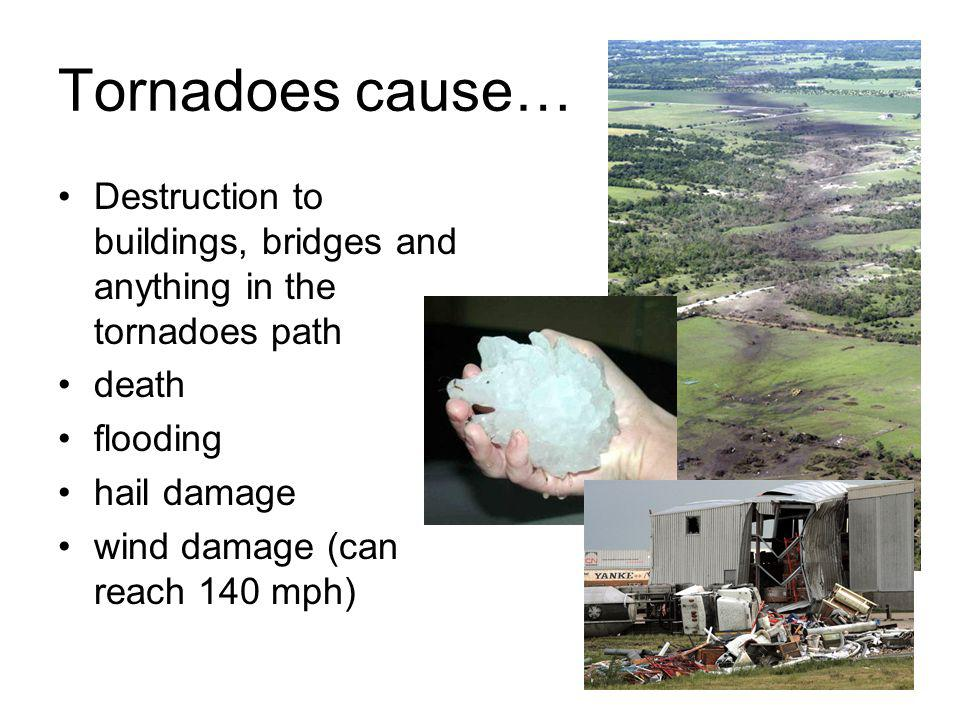 Tornadoes cause… Destruction to buildings, bridges and anything in the tornadoes path. death. flooding.