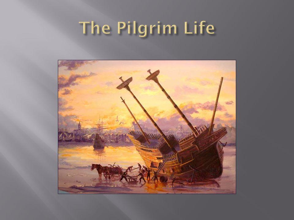 The Pilgrim Life
