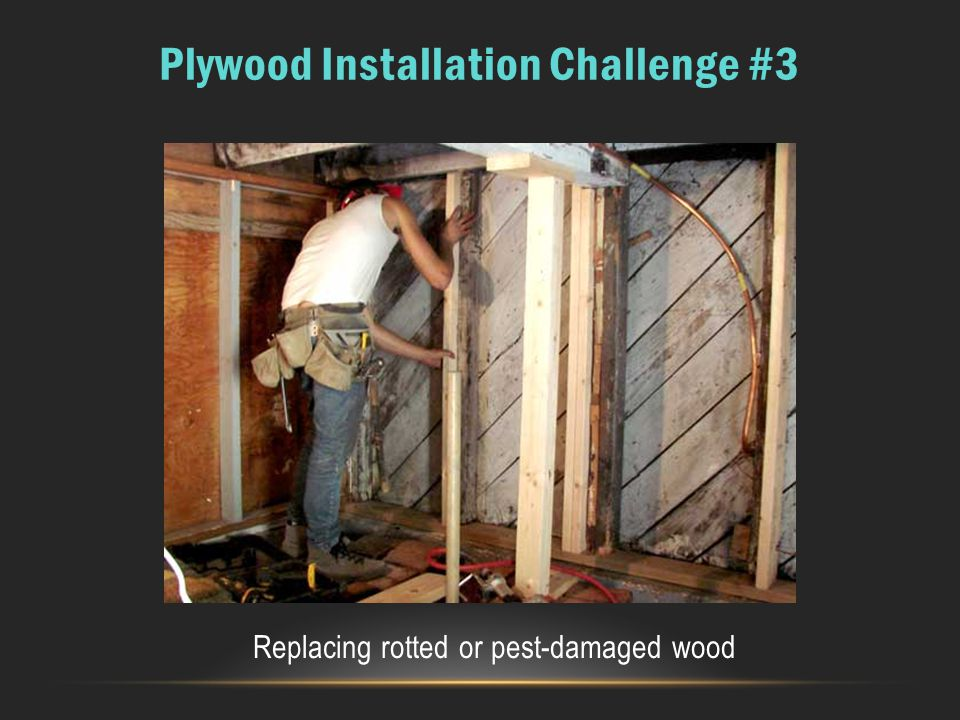 Plywood Installation Challenge #3