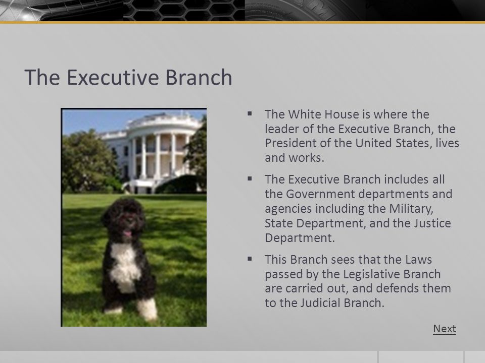 The Executive Branch The White House is where the leader of the Executive Branch, the President of the United States, lives and works.