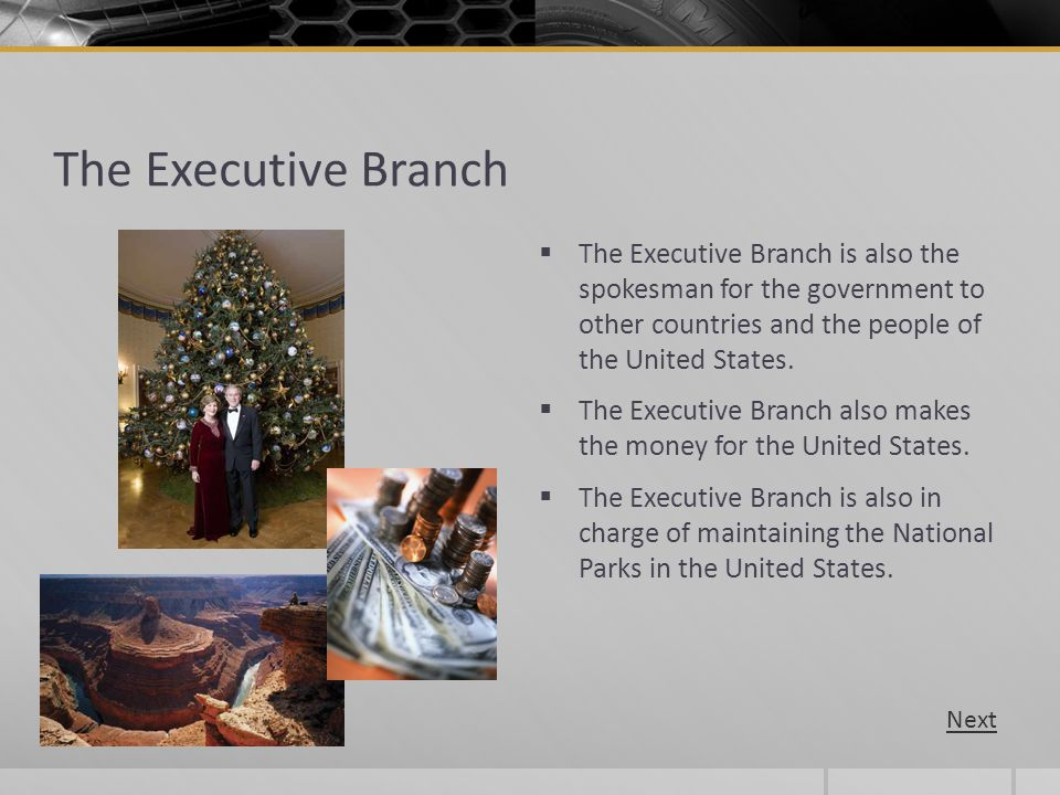 The Executive Branch The Executive Branch is also the spokesman for the government to other countries and the people of the United States.