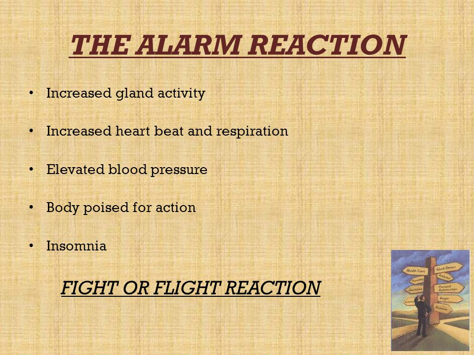 THE ALARM REACTION Increased gland activity