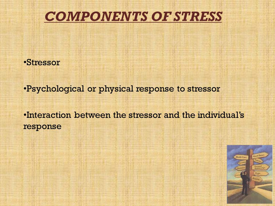 COMPONENTS OF STRESS Stressor