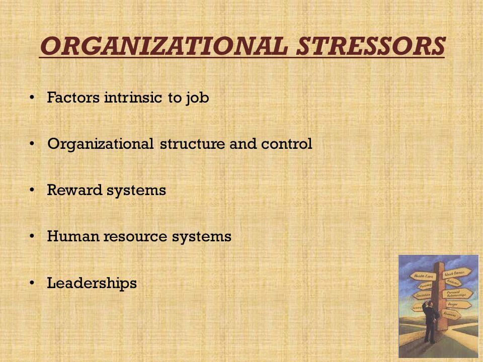 ORGANIZATIONAL STRESSORS
