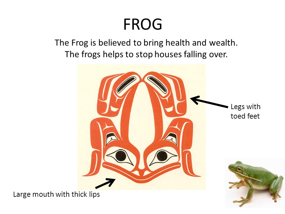 FROG The Frog is believed to bring health and wealth.