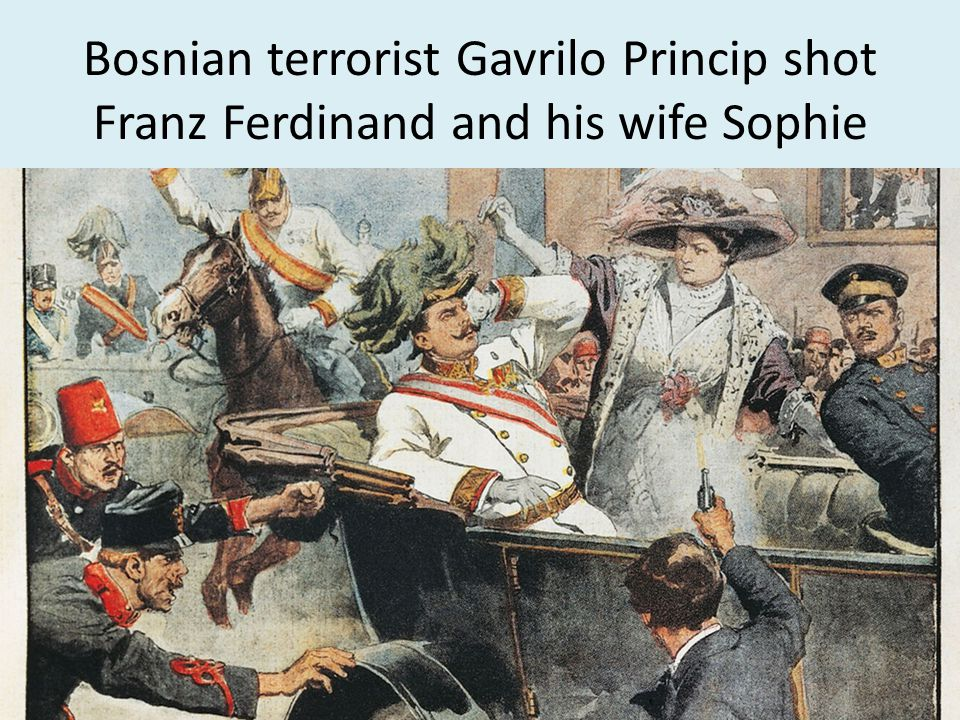 Bosnian terrorist Gavrilo Princip shot Franz Ferdinand and his wife Sophie