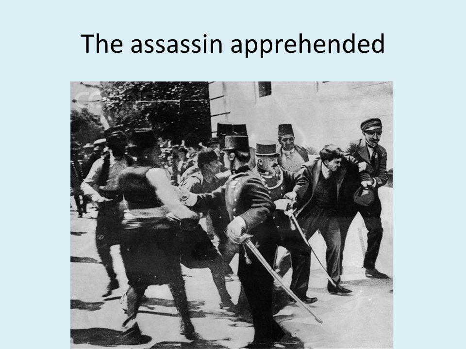 The assassin apprehended
