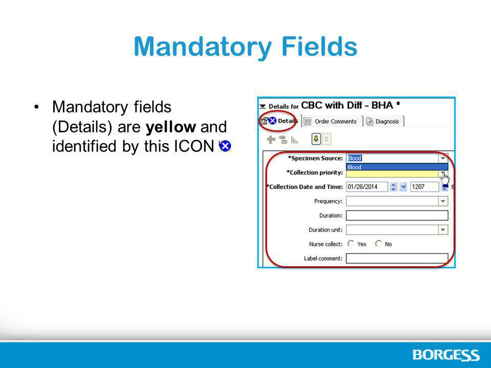 Mandatory Fields Mandatory fields (Details) are yellow and identified by this ICON