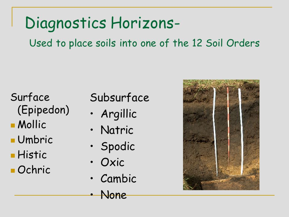 Diagnostics Horizons- Used to place soils into one of the 12 Soil Orders